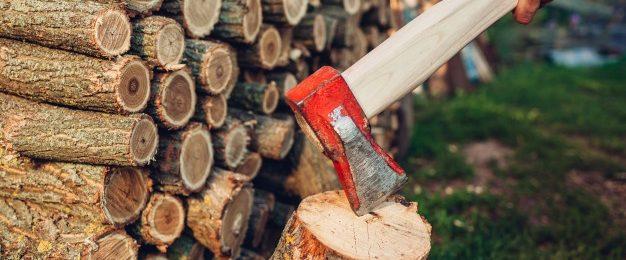 Gozdarski pripomočki za enostavno delo v gozdu